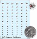Wolf Spider Battalion Decals